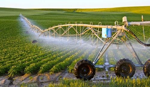 Doanh nghiệp lớn hợp tác phát triển nông nghiệp