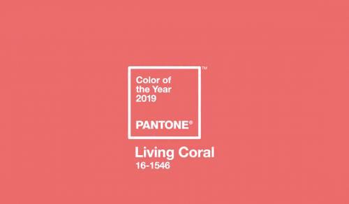 Hồng san hô là màu của năm 2019
