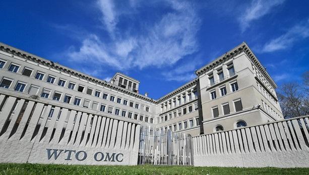 EU muốn đẩy mạnh cải cách WTO